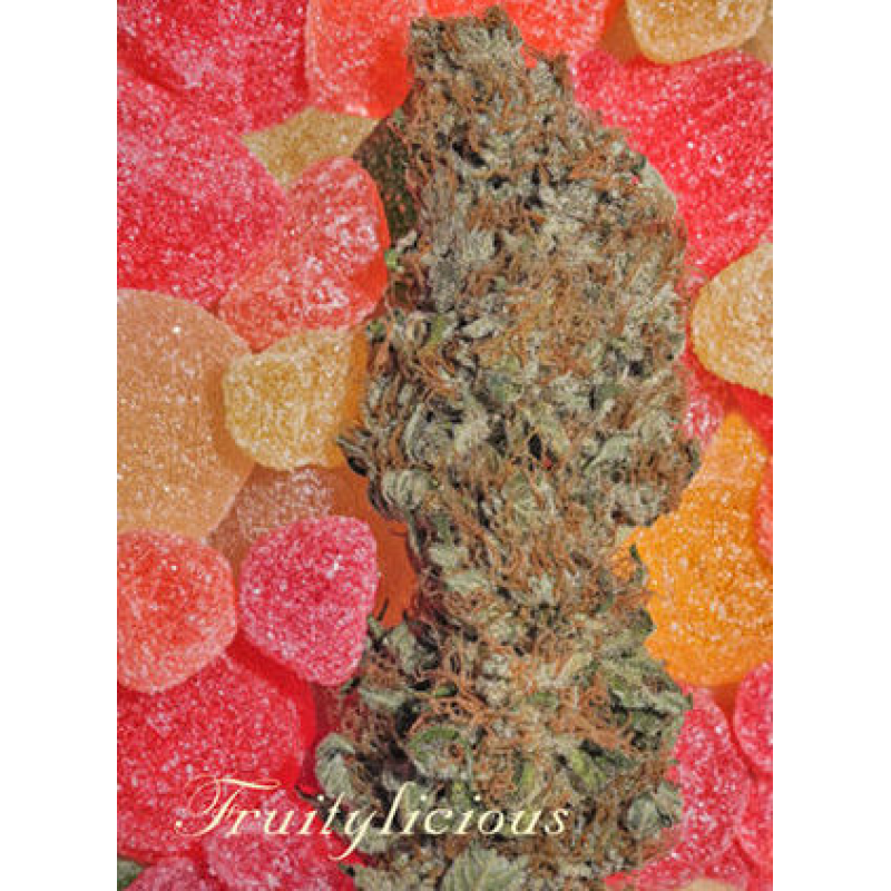 Fruitylicious Feminised Seeds